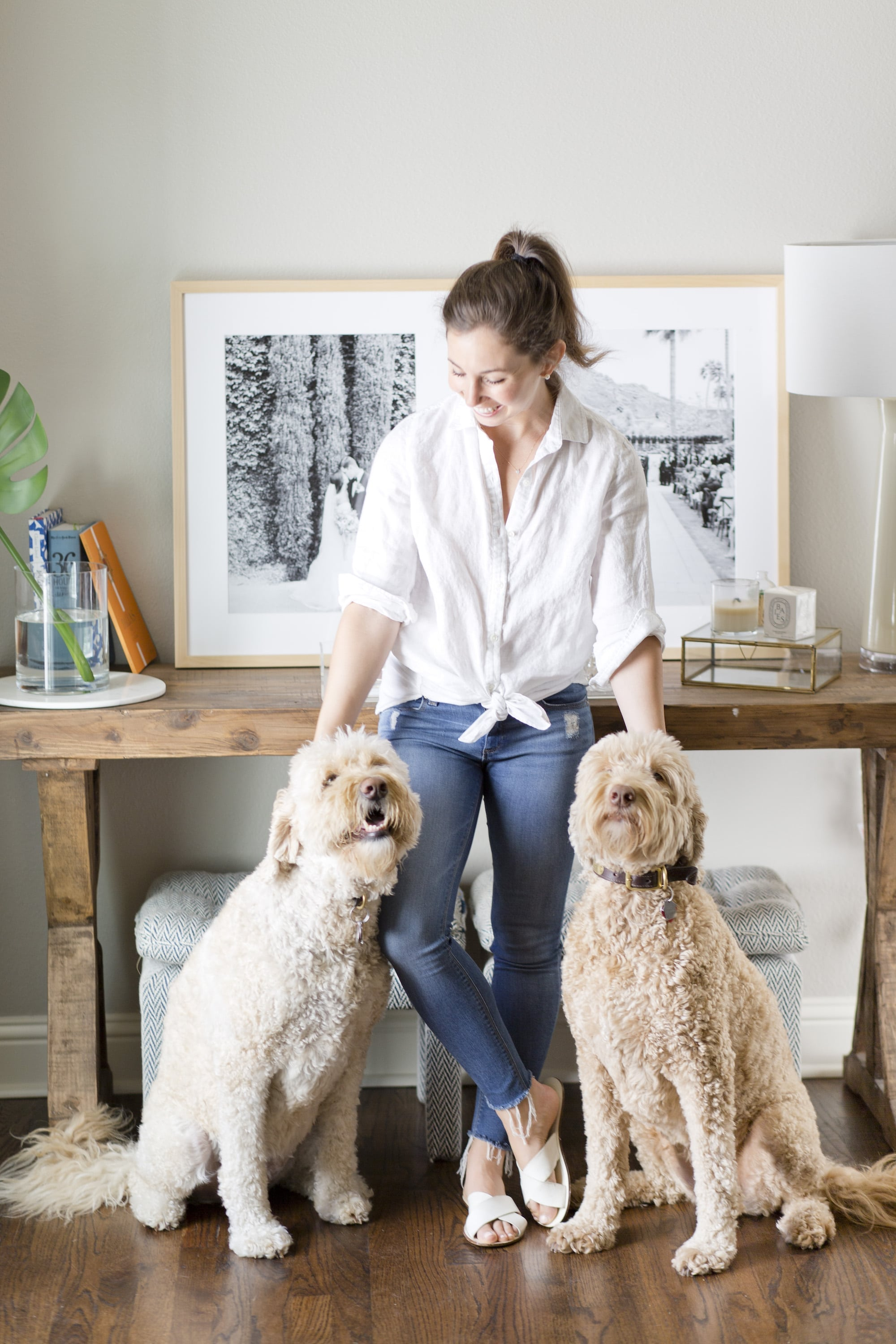 A Dash of Details with her two goldendoodle puppies for Framebridge