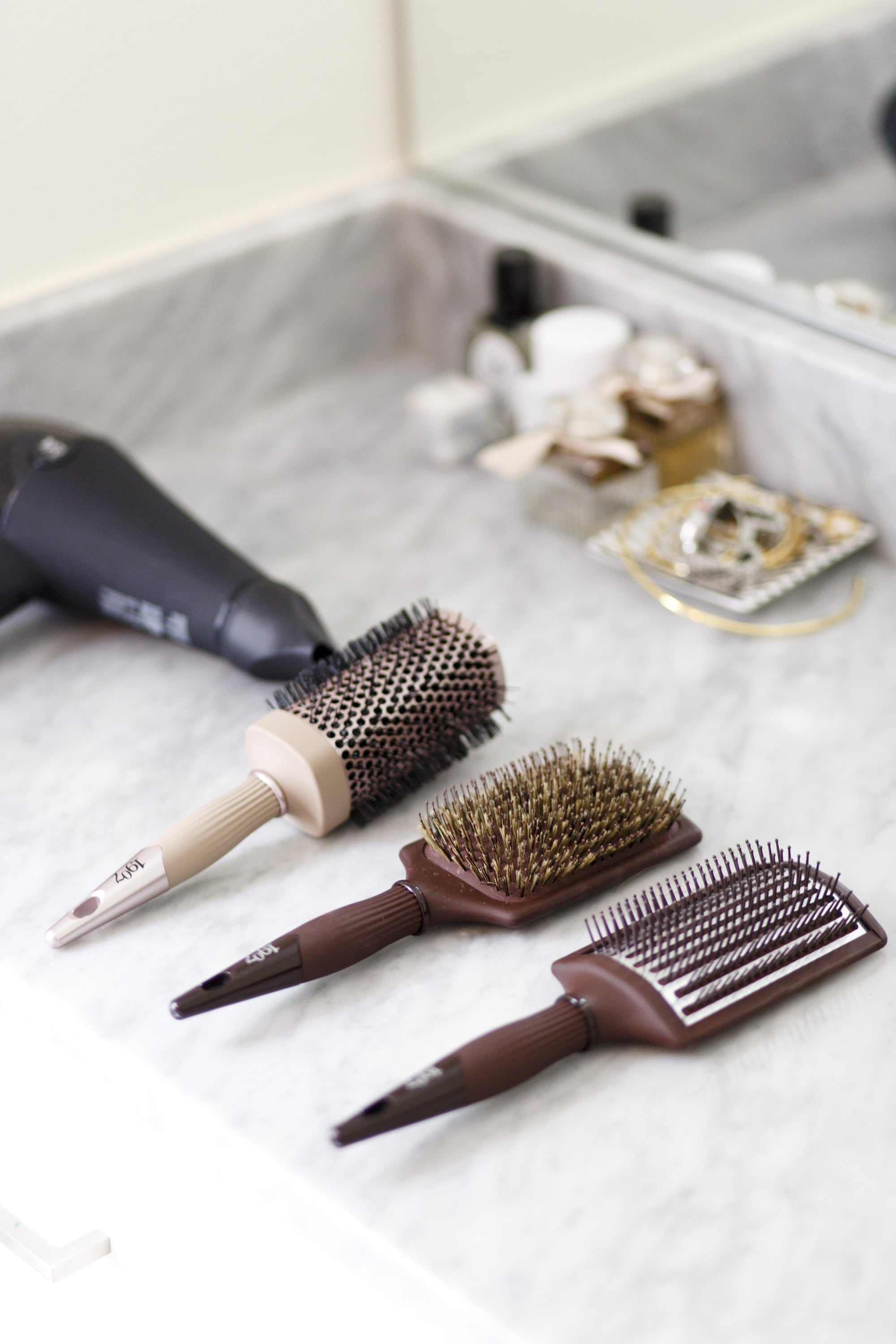 Brushes and Hair Dryer