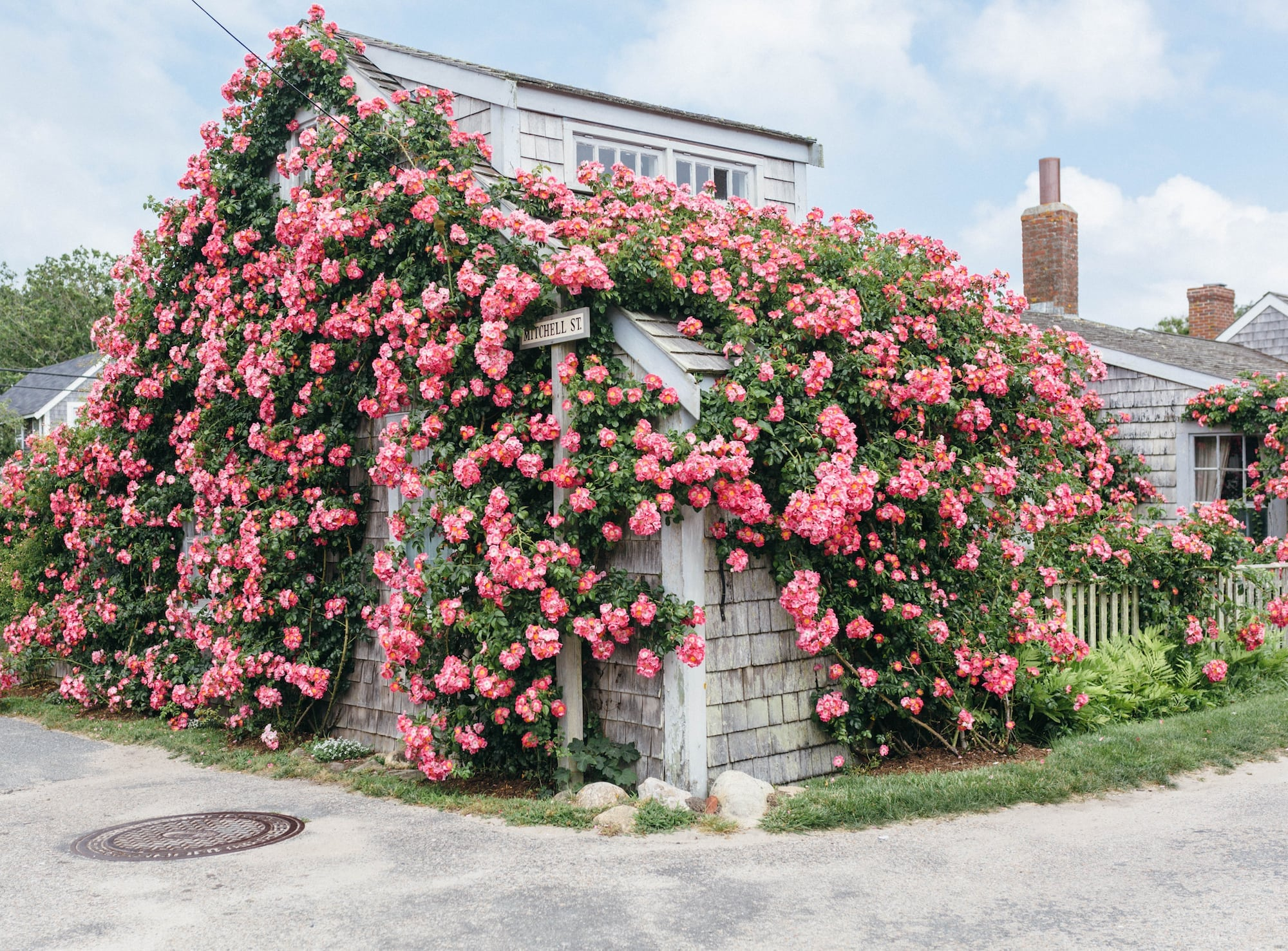 Nantucket Rose Covered House